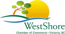 Diversified Scientific Solutions Logo